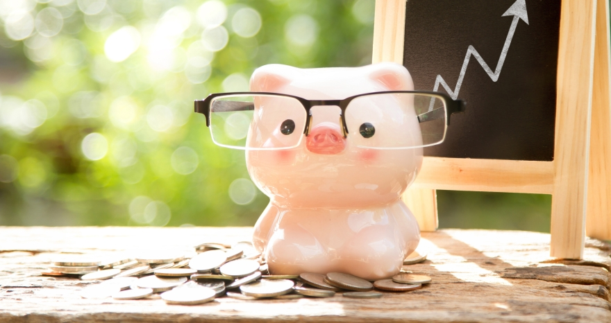 Investing for Dummies by a dummy
